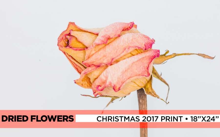 2017-xmas-print-banner